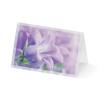 Blumenprismen