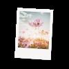 Postkarten Retro-Liebe